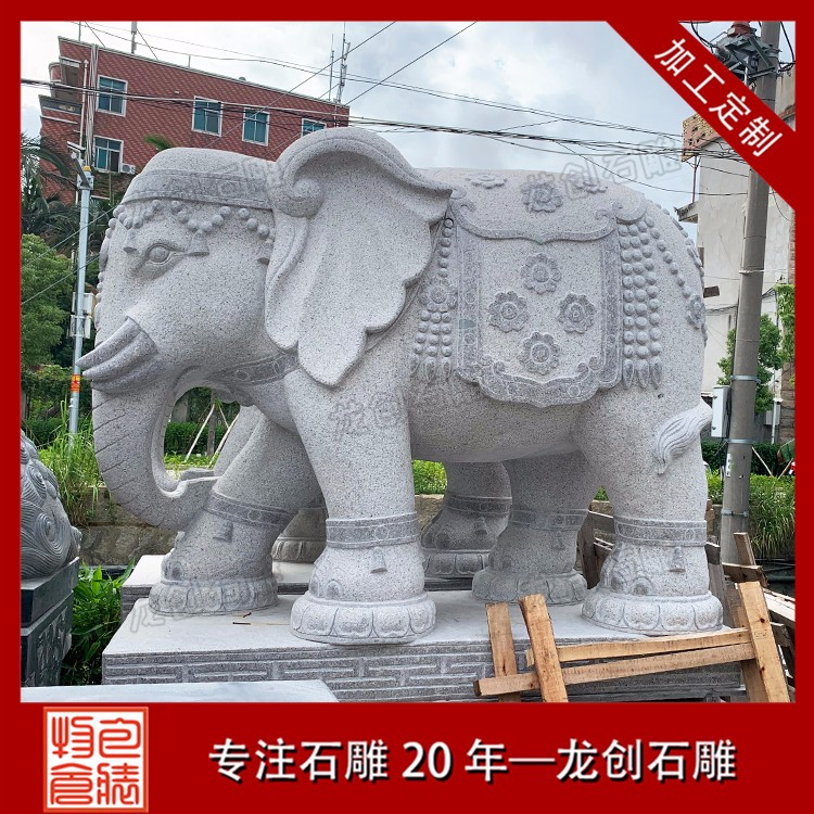 大象 (20)
