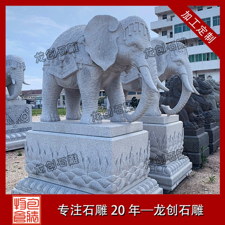 大象 (305)
